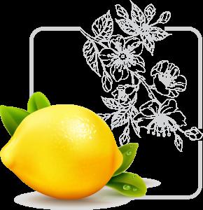 آیکون لیمو ترش
