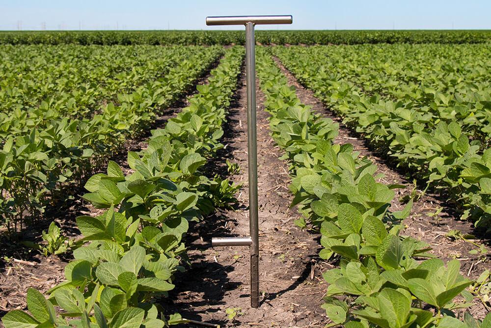 نمونه برداری از خاک در مزرعه