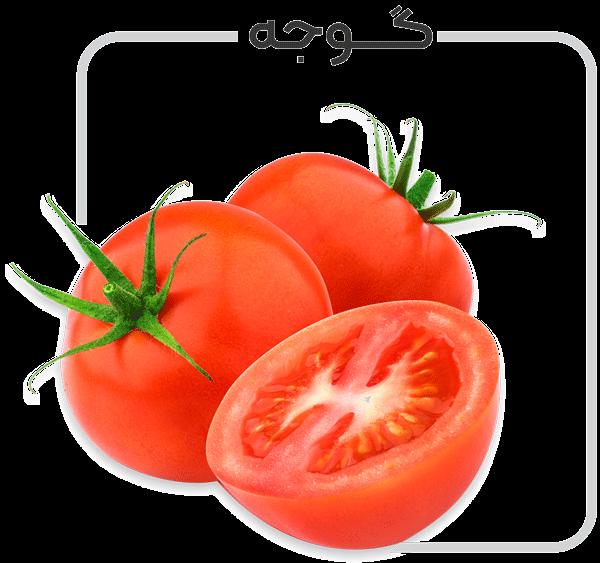 برنامه کود دهی گوجه