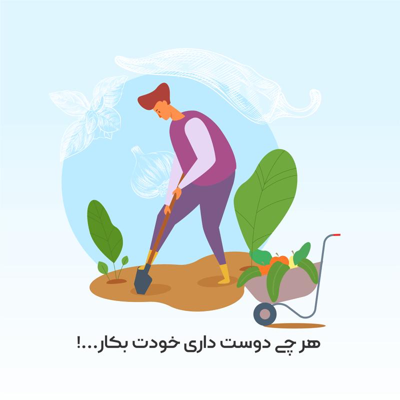 خرید آنلاین بذر